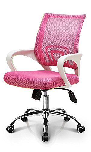 Ergonomic Lumbar Support Both The Mesh Back And Are Specifically Designed To Provide Additional